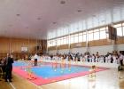 Karate2019 4