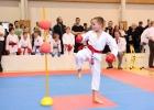 Karate2019 80
