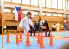 Karate2019 16