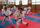 20190330-Soustředění-talentované-mládeže-Moravy-a-Slezska-č.-3-Olomouc-059